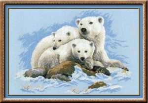 1033-Belie-medvedi