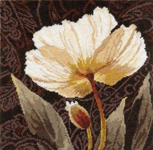 2-17-Belie-cveti.-Zalitii-svetom