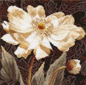 2-18-Belie-cveti.-V-obyatiyah-sveta