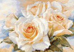 2-32-Belie-rozi