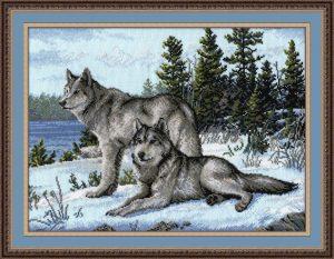 567-Volki