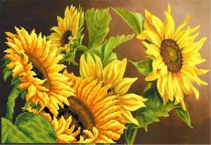 art.-4063-Solnechnii-cvet