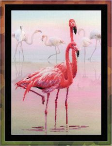0012-RT-Flamingo