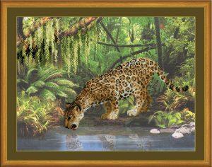 0023-RT-Leopard-y-vodi