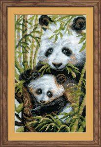 1159-Panda-s-detenishem