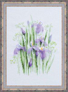 1181-Vesennie-irisi
