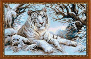 1184-Bengalskii-tigr