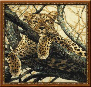937-Leopard