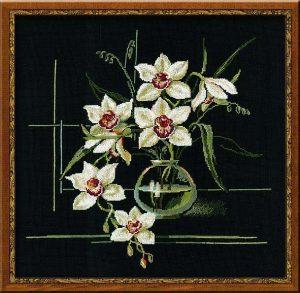 941-Orhidei