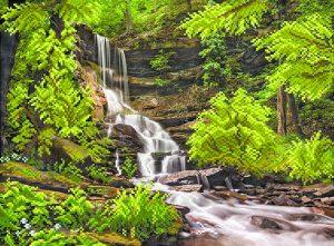art.-4146-Vodopad-v-lesy