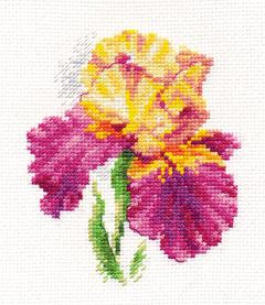 0-136-Iris