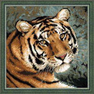 1282-Amyrskii-tigr