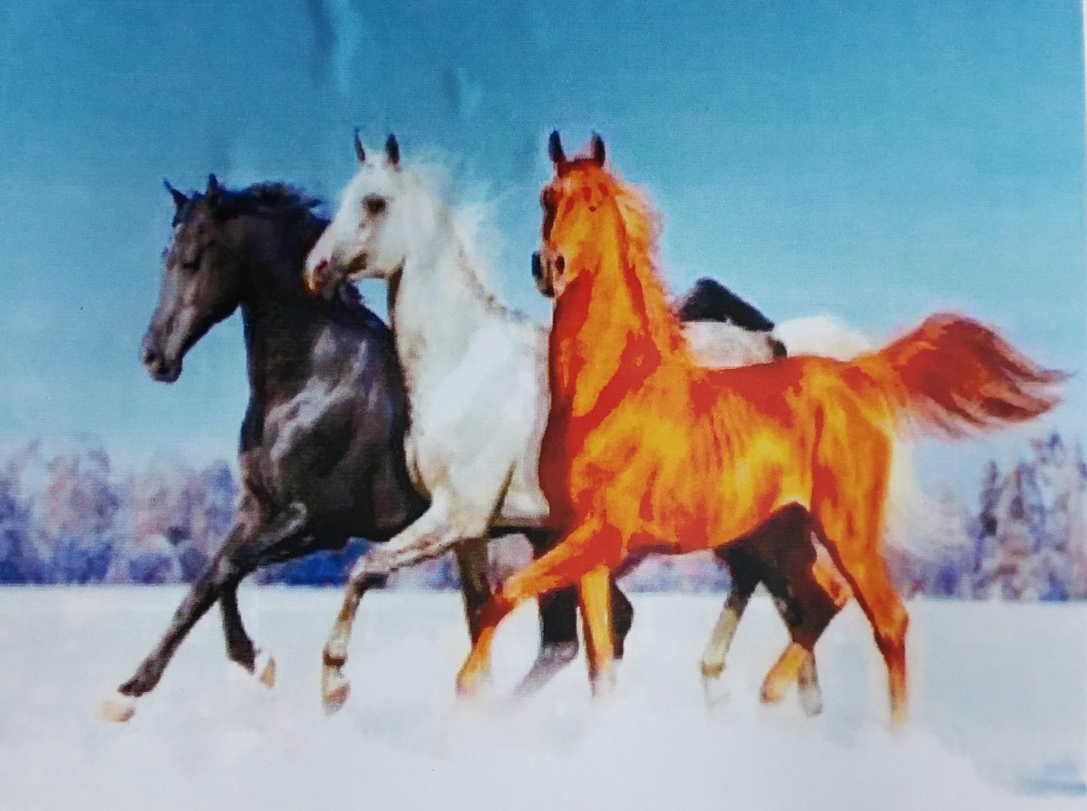 Три лошади картинки